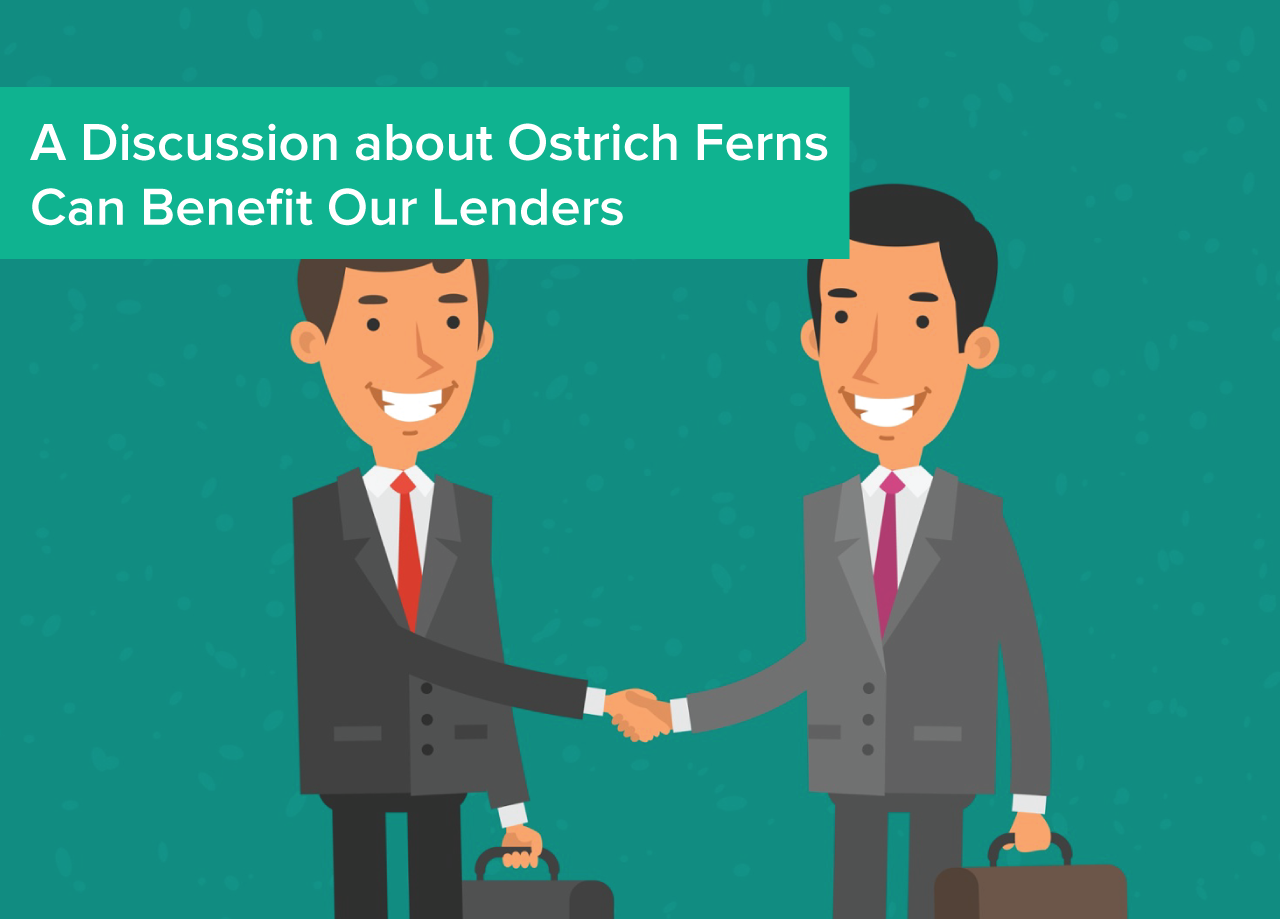 A_Discussion_about_Ostrich_Farms_Can_Benefit_Our_Lenders.png